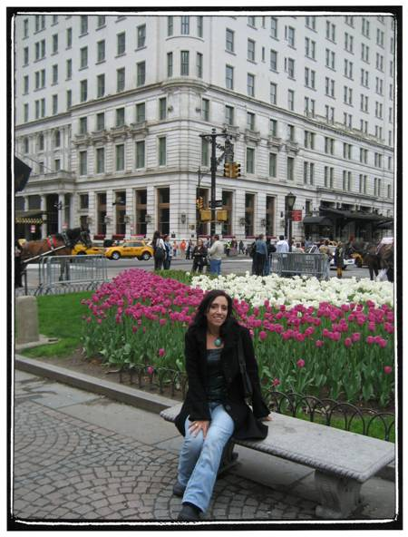 NYC tulips