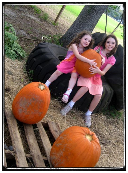 SF_pumpkin_patch